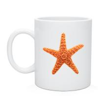 Кружка морская звезда